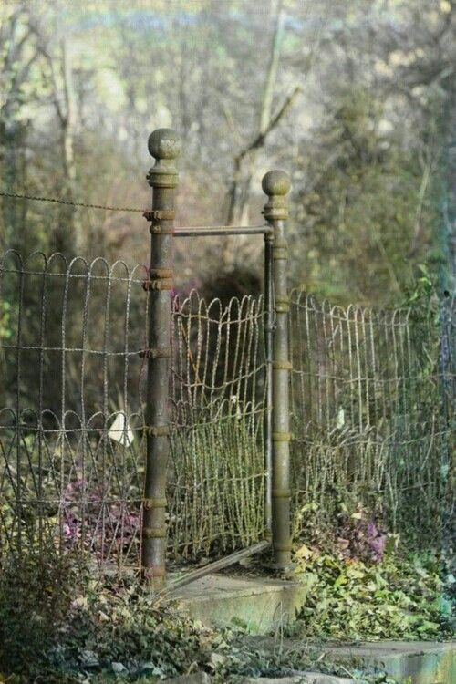 Old Fashioned Metal Garden Fence And Gate
