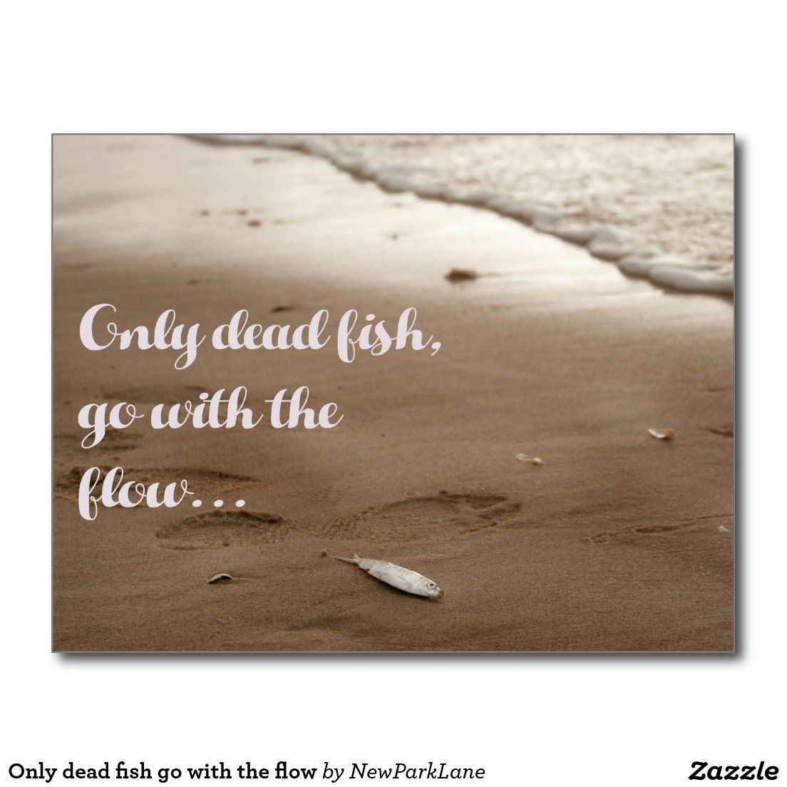 Go With The Flow Quotes Only Dead Fish Go With The Flow  Postcard Fun Quote  Quotes