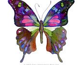 No.98 Graphium Weiskei Butterfly, 8x10 Signed Fine Art Print of Amy Kirkpatrick watercolor
