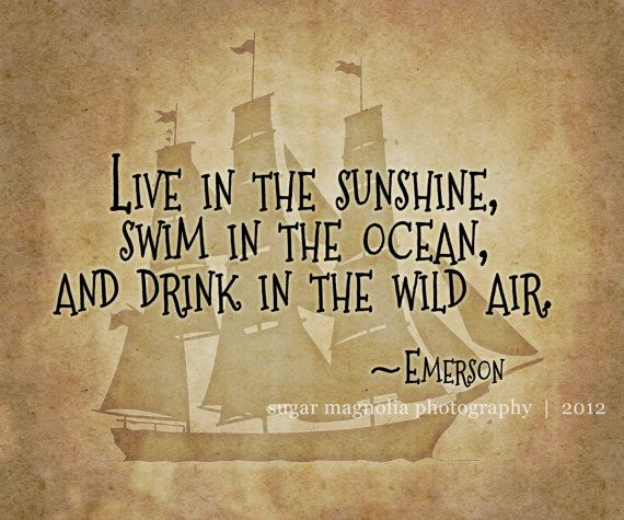 Nautical / Pirate Wall Decor for older kids | Aarrrrrgh Matey ...