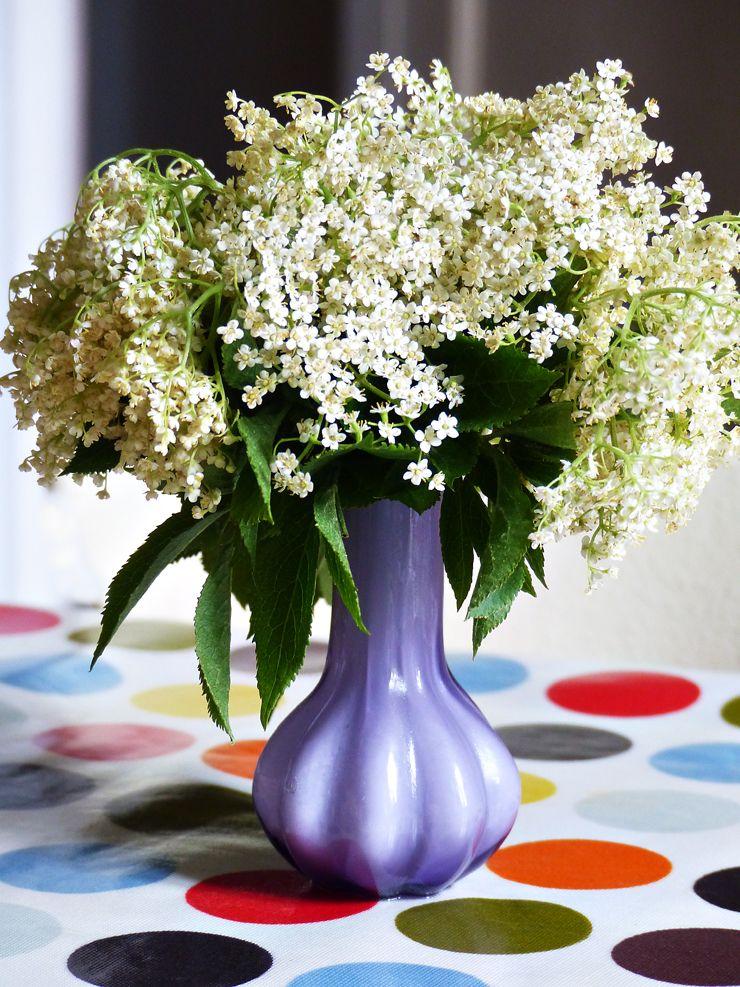 elderberry flowers un bouquet de fleurs de sureau flowers. Black Bedroom Furniture Sets. Home Design Ideas