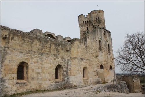 Abbaye De Montmajour Abbaye Edifices Religieux Architecture Medievale