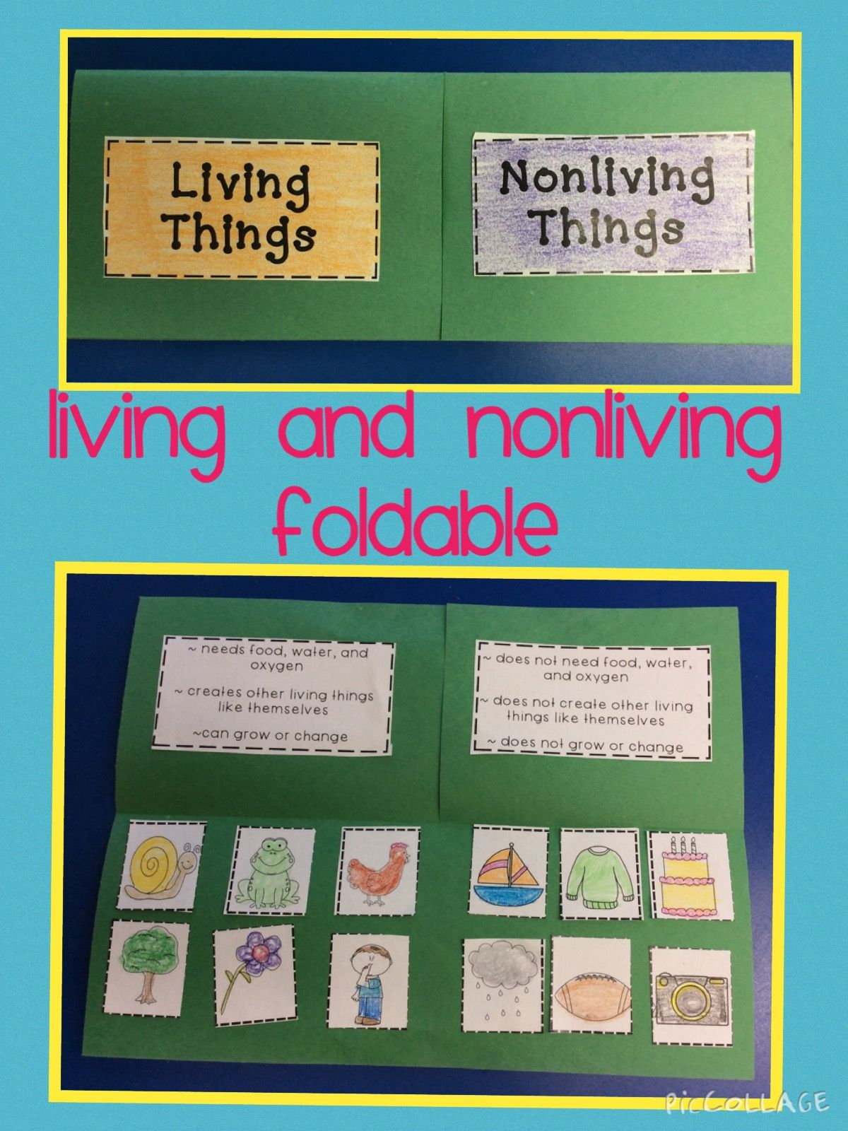 Here Is A Fun Hands On Idea For Teaching About Living And Nonliving Things Can Be Differentiated For Differen Living And Nonliving Nonliving Science Lessons [ 1600 x 1200 Pixel ]