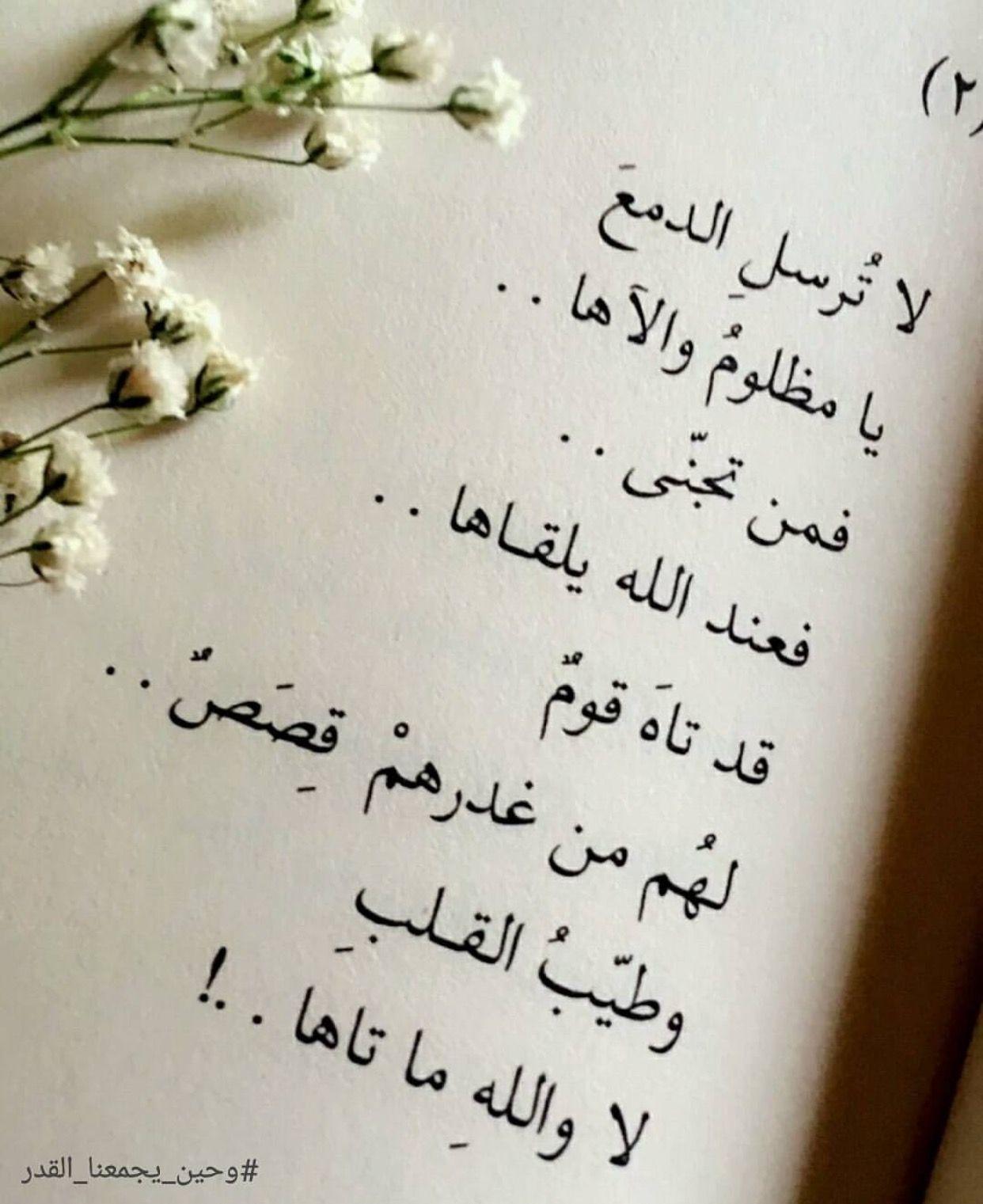 Desertrose والله ما تاهت طيبه القلب Cool Words Mood Quotes Arabic Words
