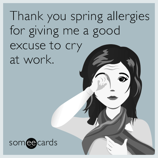 Thank You Spring Allergies For Giving Me A Good Excuse To Cry At Work Allergies Funny Spring Allergies Allergies Quote