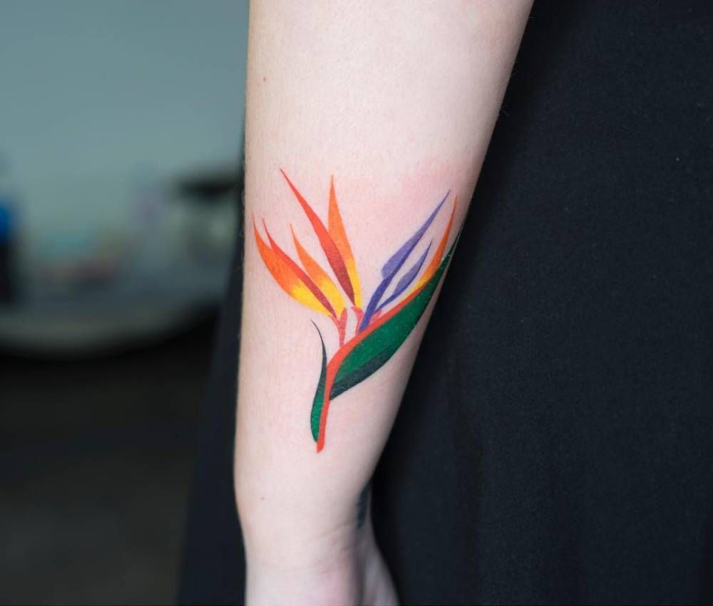 Bird Of Paradise Tattoo On The Left Forearm Paradise Tattoo Bird Of Paradise Tattoo Bird Tattoo Sleeves