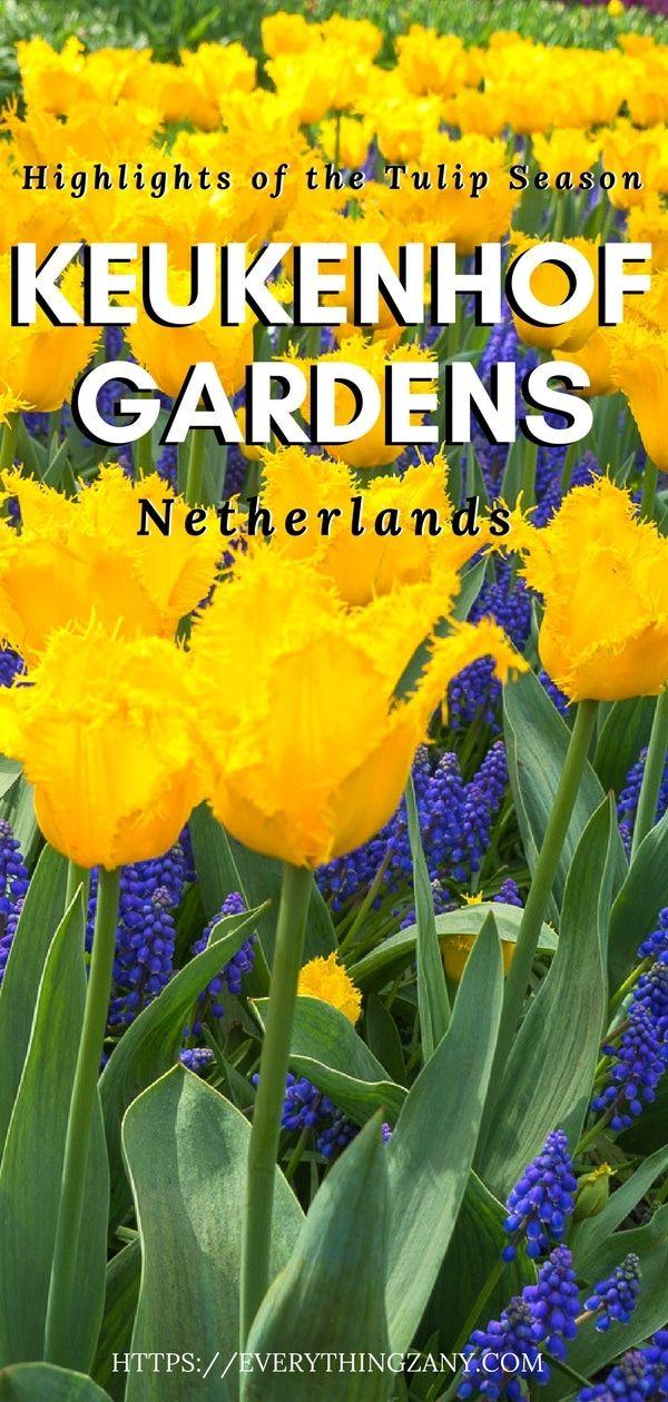 Keukenhof GardensThe Highlight of the Tulip Season