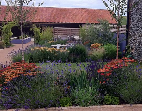 Garden Design Norfolk Design Norfolk Garden Design  Jackie Finch  Waterwise  Pinterest  Gardens