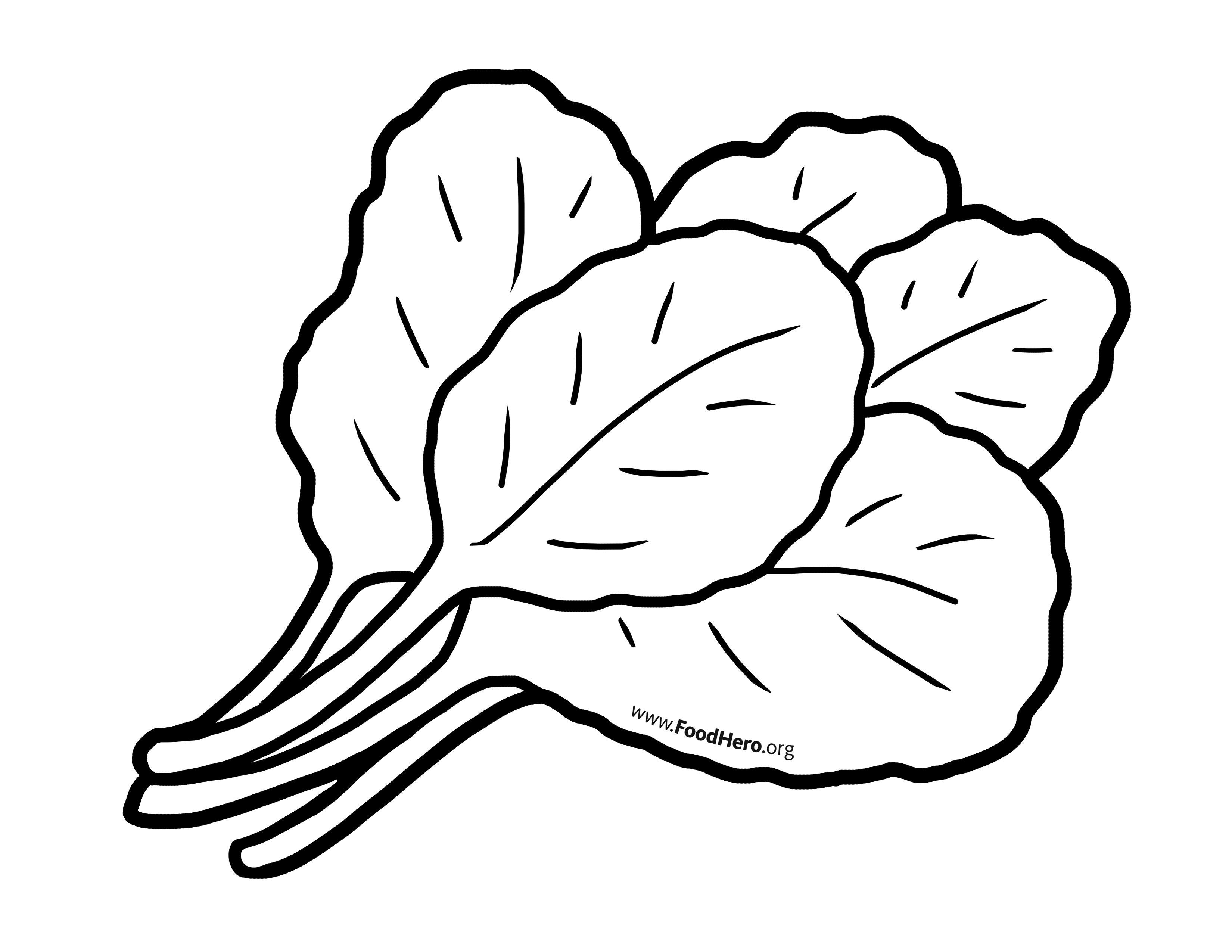 Chollard Greens illustration. #foodhero #bullentinboards #artwork ...