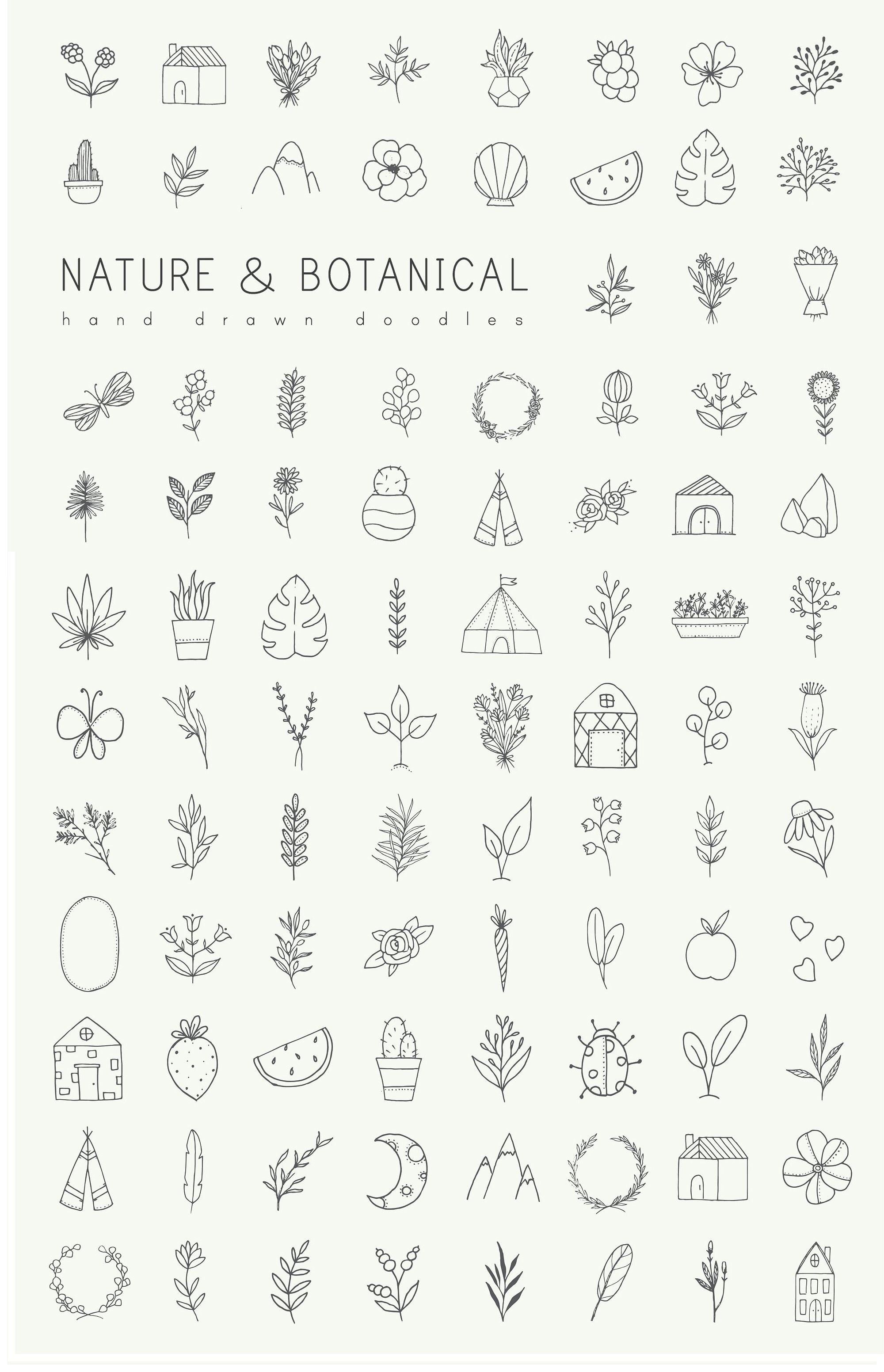 Photo of Hand drawn nature & plants doodles