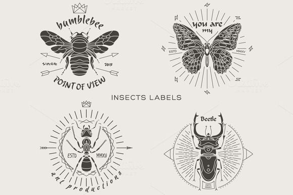 Vintage Insect Labels By Karnoff On Creative Market