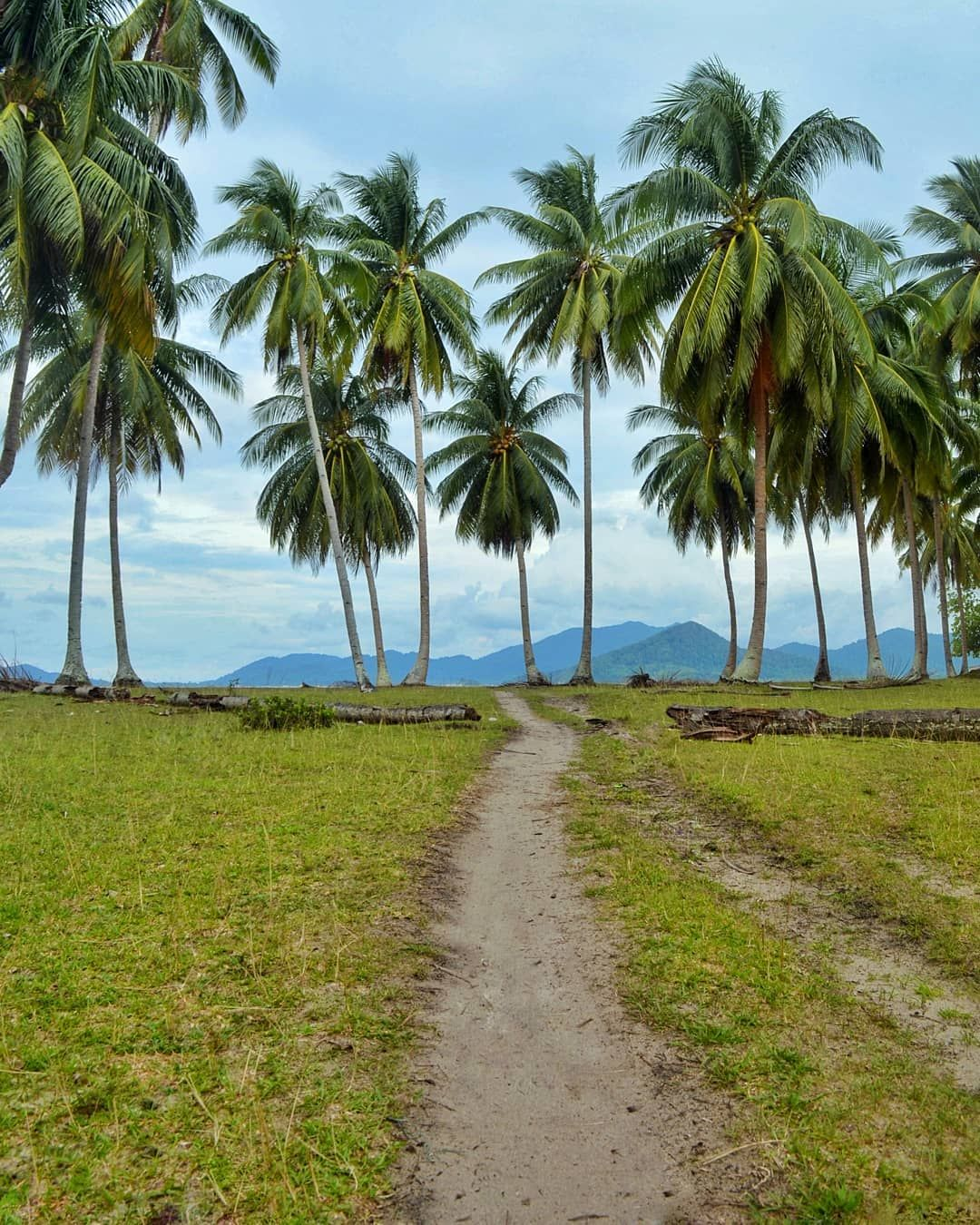 Nature Tropical Landscape Letung Padangmelang Anambas Wonderful Indonesia Instatravel Nature Tropical Landscape Letung Country Roads Country Road