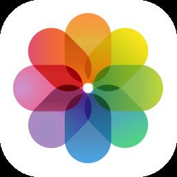 Take A Screenshot On Your Mac Pc Or Mobile Device Telas Estojos Patchwork
