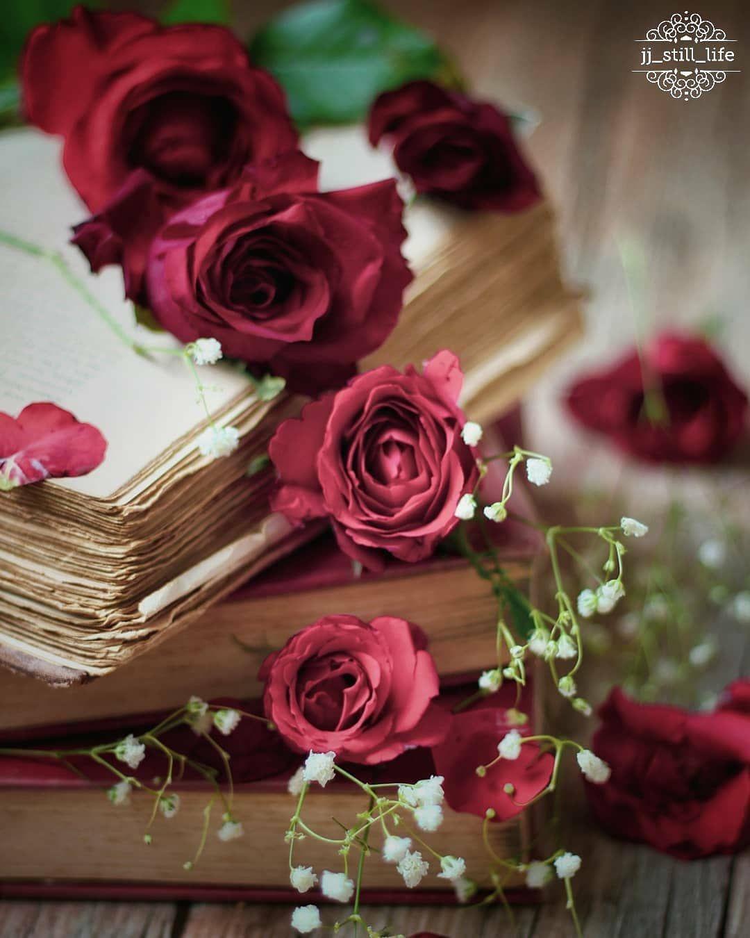 Izobrazhenieto Mozhe Da Sdrzha Cvete Beautiful Rose Flowers Book Flowers Flowers Photography