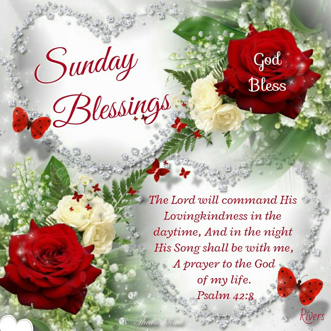 Sunday Blessings Psalm 428 Days Of The Week Sunday Blessed
