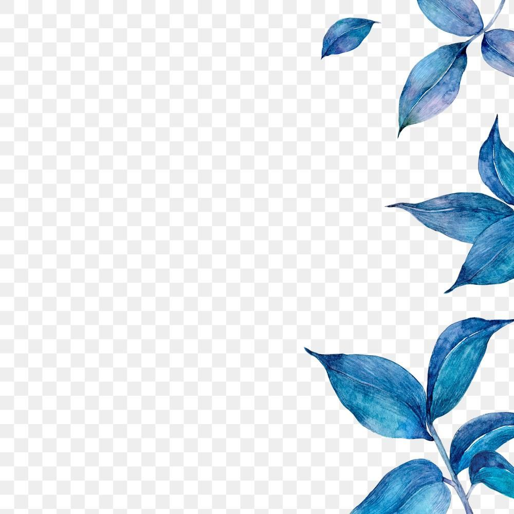 Png Blue Watercolor Leaf Border Free Image By Rawpixel Com Adj Flower Frame Watercolor Leaves Blue Watercolor