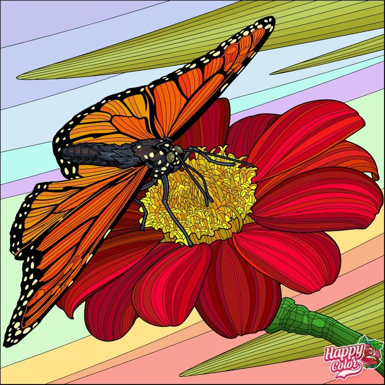 Pin By Susana Perez Costa On A Kepeim Flower Art Happy Colors Colouring Pics