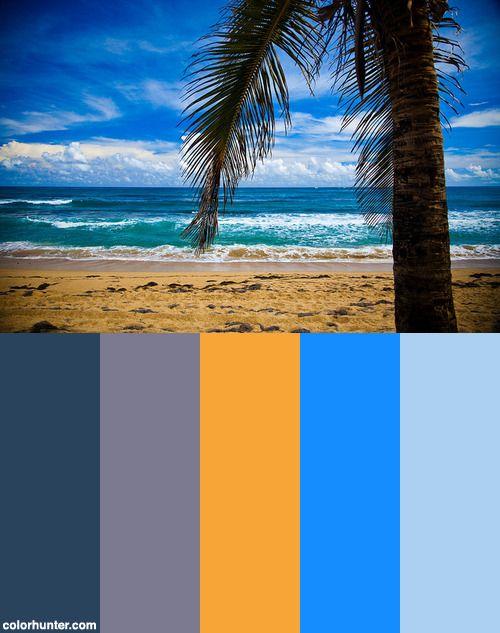 Img_8642+Color+Scheme