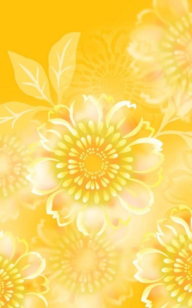 Golden Chrysanthemum Petals White Yellow 173782 Birth Month Flowers Month Flowers Yellow Flowers