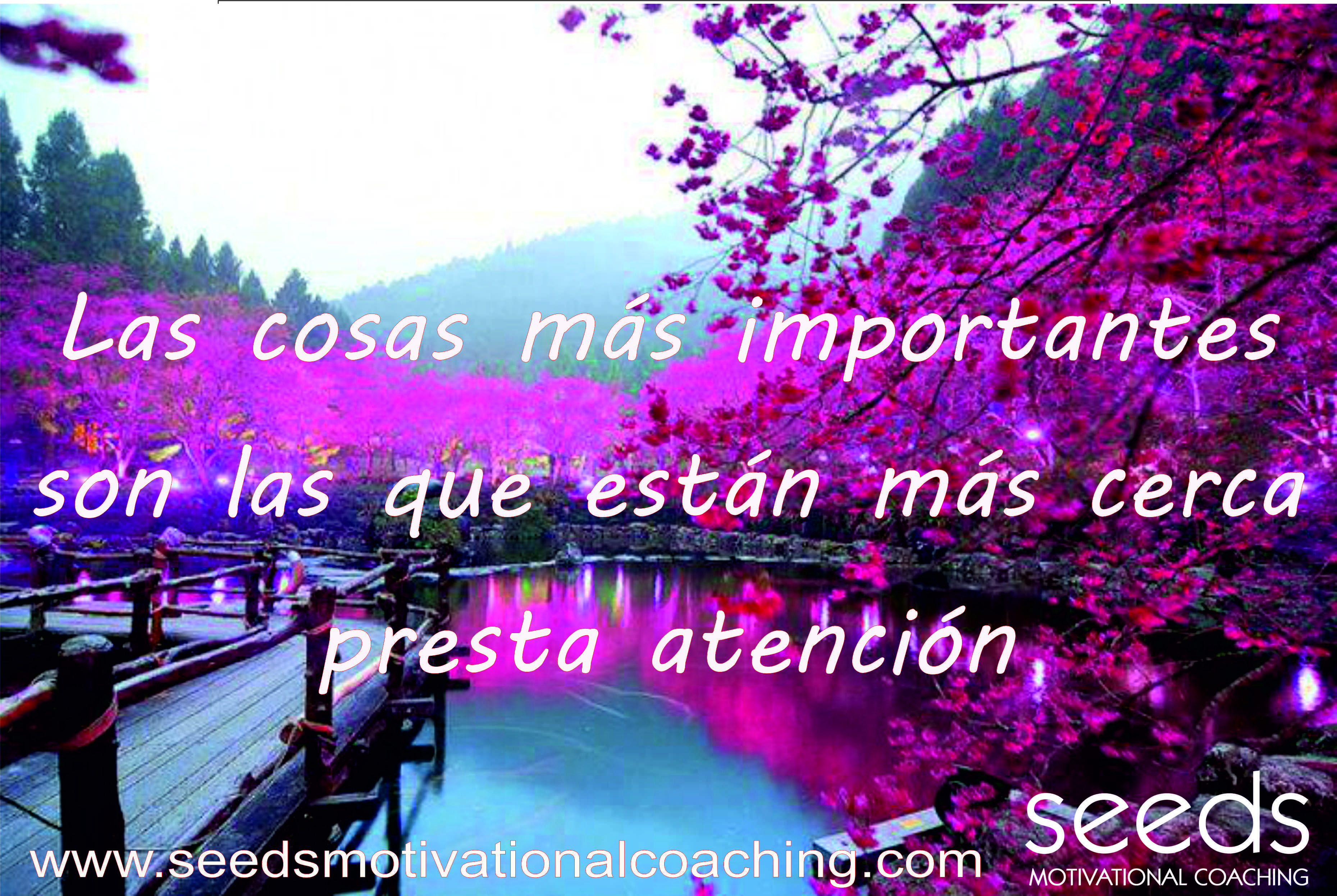 Most important things are closest to you, keep atention. #Coaching