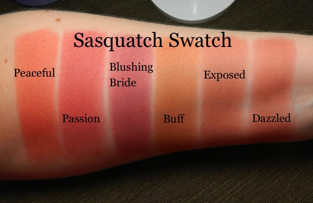 Tarte Blush Natural Beauty Swatch