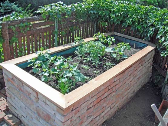 Gartenmobel Rattan Poco Fotos Aus Einem Garten In Pixendorf In 2020 Raised Garden Garden Care Raised Garden Beds
