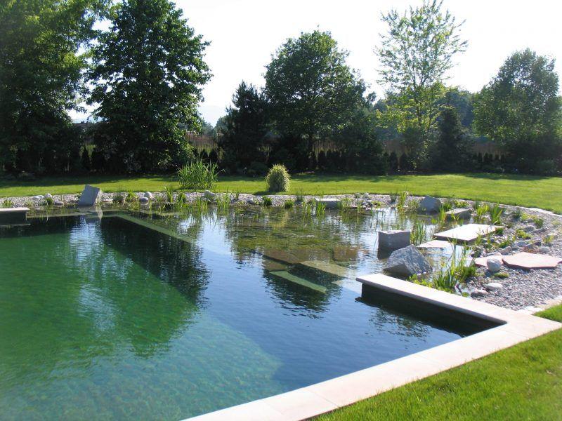 Wie viel darf ein Schwimmteich kosten? Natural swimming pools and