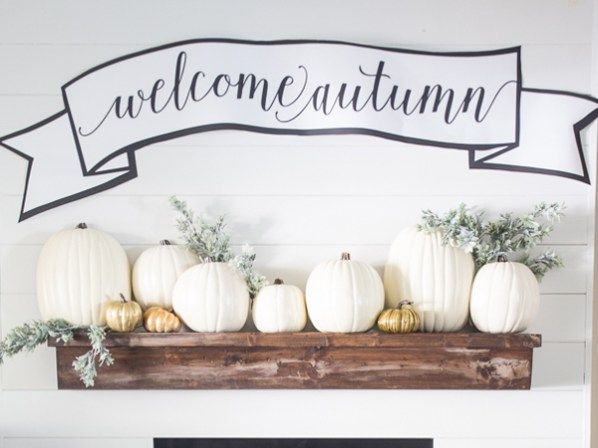 Explore a wonderful collection of free fall printables for your home
