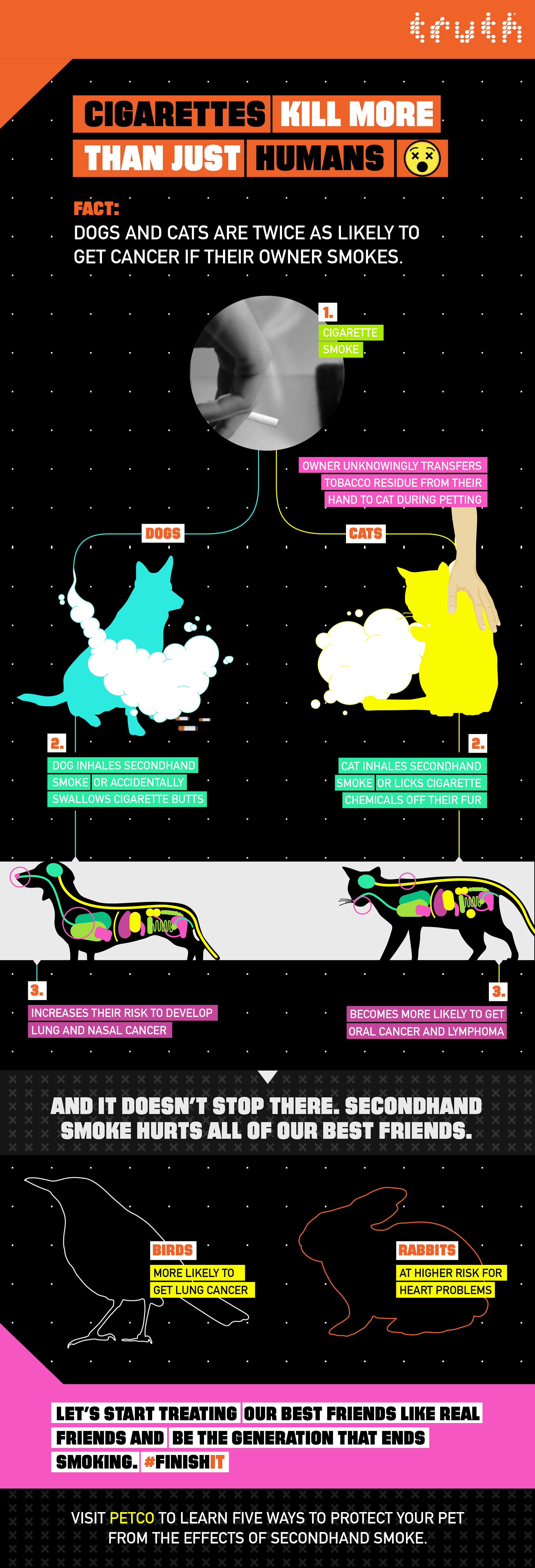 Why Secondhand Smoke Is Deadly For Dogs Infographic