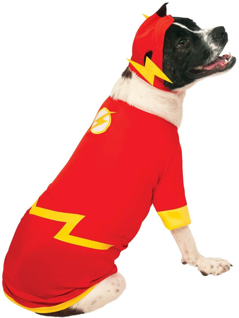 Flash Dog Costume The Flash Costumes Pet Costumes Superhero