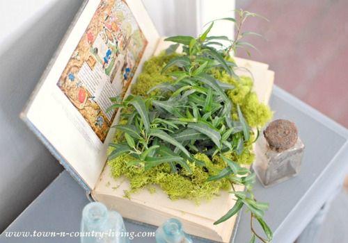 Repurposed Book Planter | 15 Creative Repurposed Flower and Planter Ideas | www.knickoftime.net