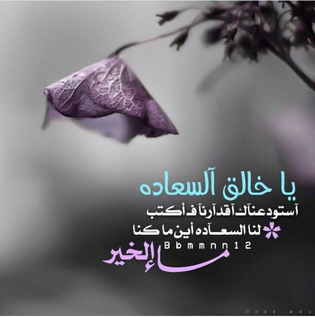 Epingle Par Zi Sur مساء الخير Belles Citations Bonsoir Citation