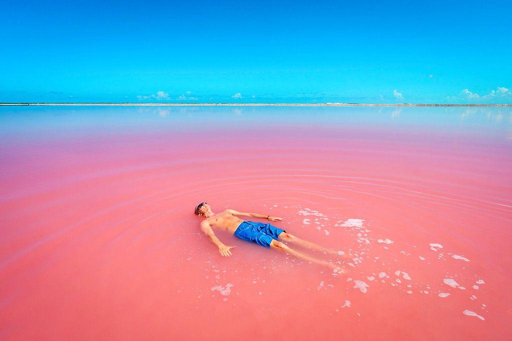 Las Coloradas: Visiting Mexico's Amazing Pink Lakes! | Pink lake, Lake  swimming, Visit mexico
