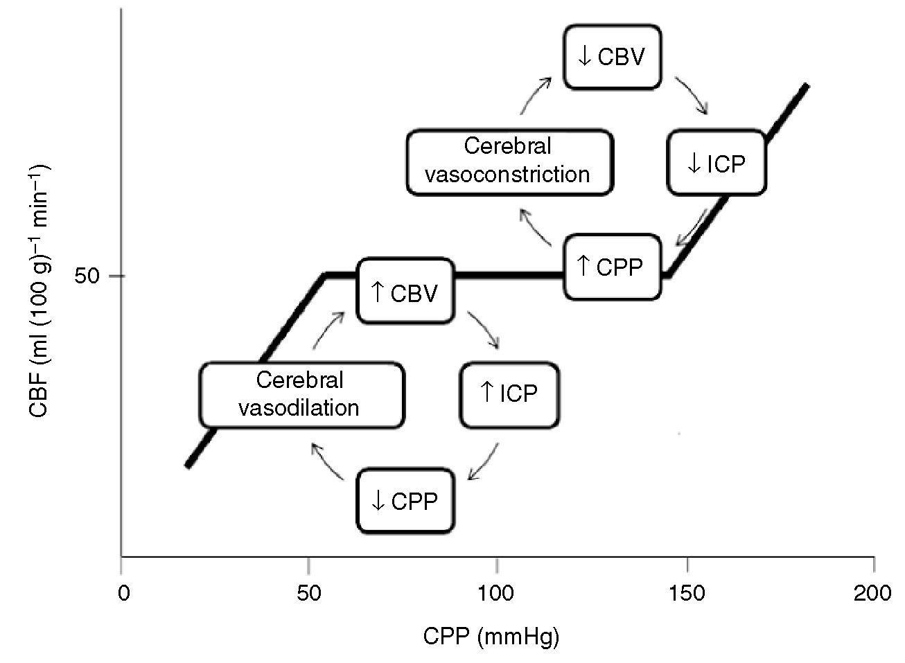 CPP ICP Google Search Google search, Nurse, Search