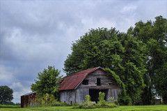 Drive By Shooting (glenda.suebee) Tags: ohio summer country barns farms backroads 2013 ohiofoothills glendaborchelt