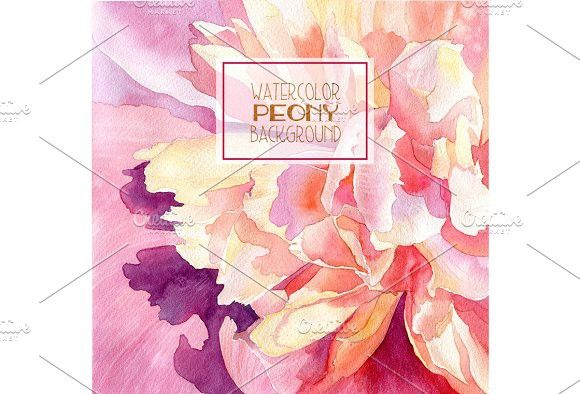 Watercolor peony background. Watercolor Flowers