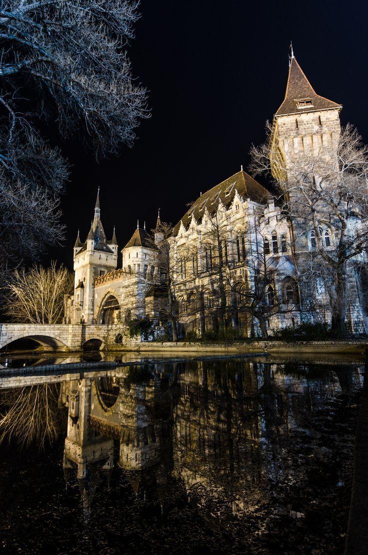 Vajdahunyad Castle Budapest Hungary Travel Med Billeder Rejser Slotte Palaeer