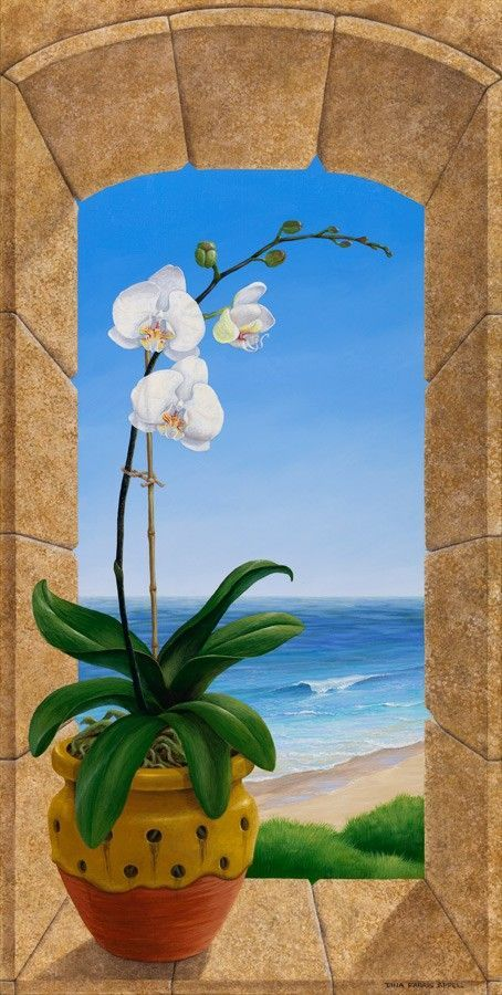 Image for The Orchid