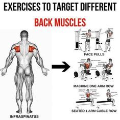 infraspinatus  exercises to target different back muscle