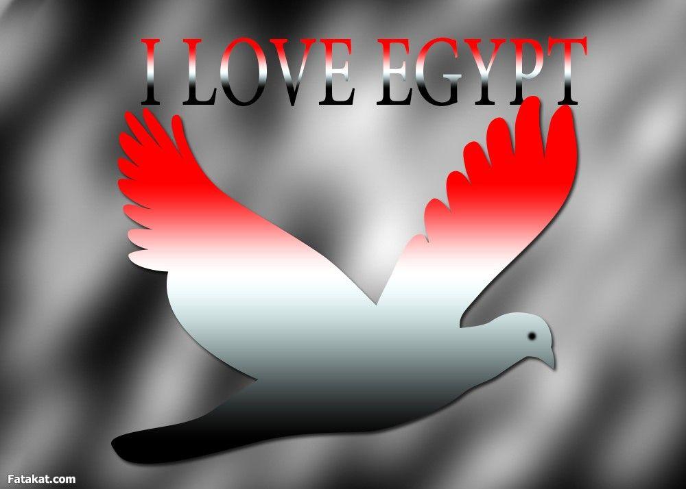 Egypt Art Movie Posters