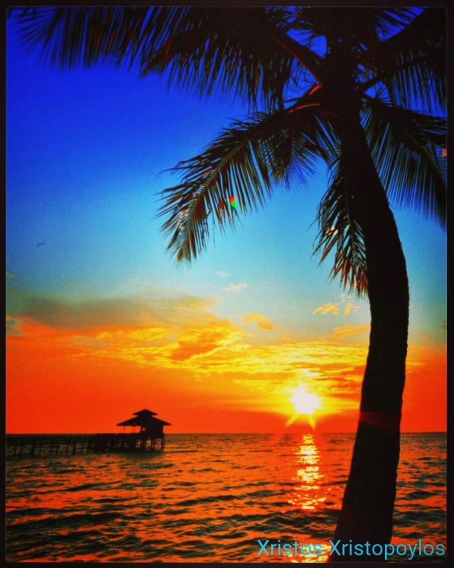 A Wonderful Sunset On The Beach With Palm Tree