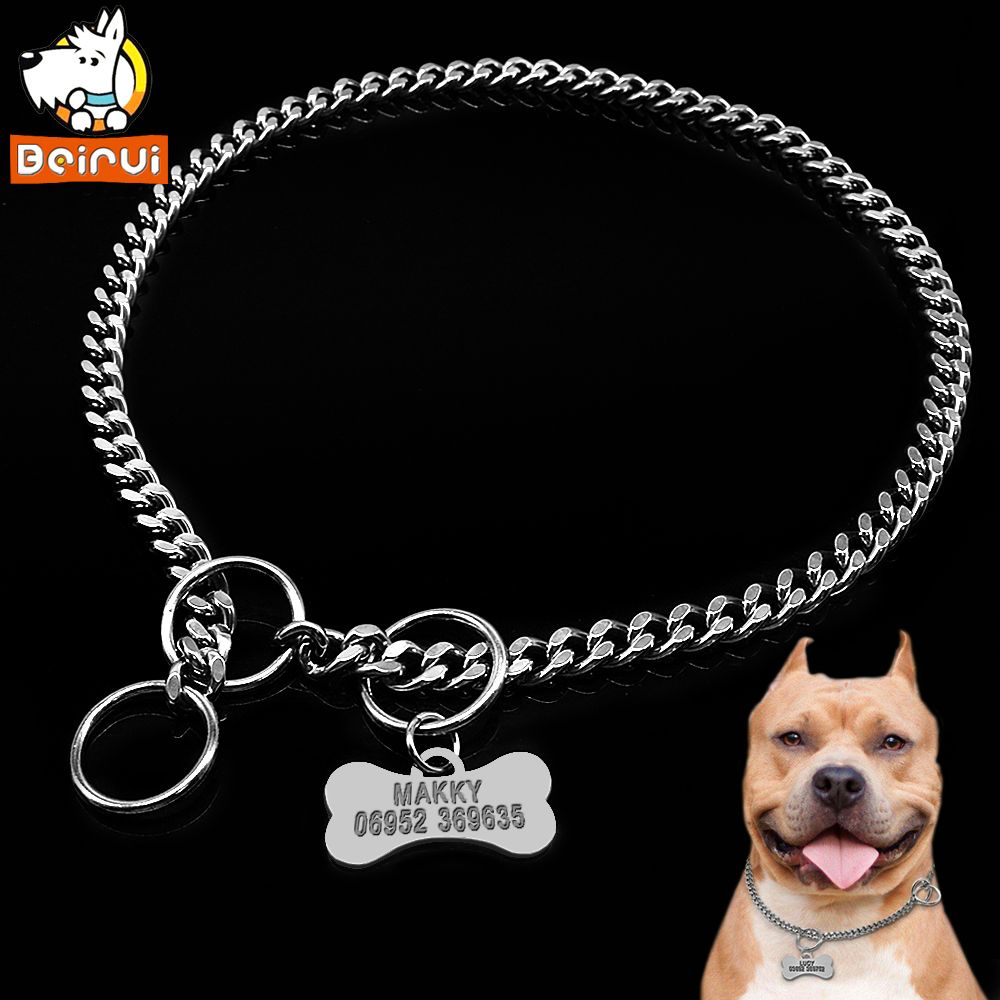 Dog Training Collar And Personalized Dogs Tag Set Snake P Slip