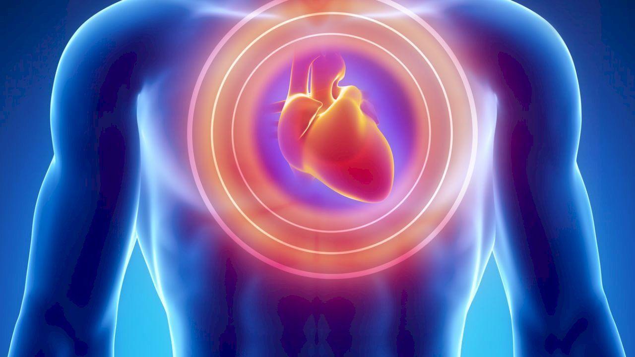 أين يقع قلب الإنسان في الجسم Ketogenic Diet Cancer Ketogenic Supplements Heart Failure Treatment