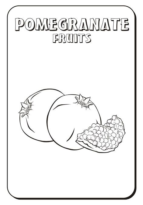Pomegranate Coloring Page Cool Coloring Pages Coloring Pages