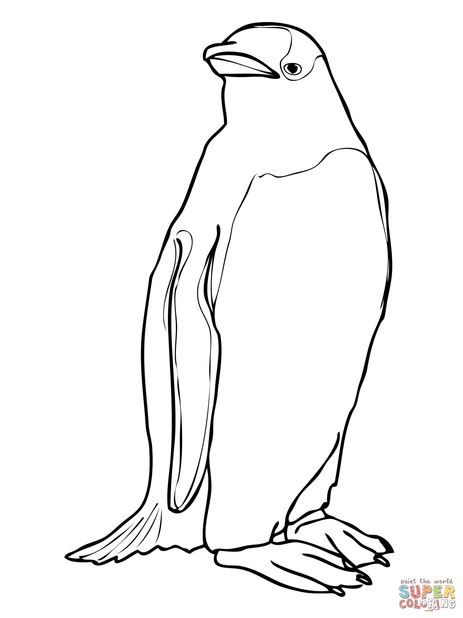 Gentoo Penguin Coloring Online Penguin coloring, Penguin