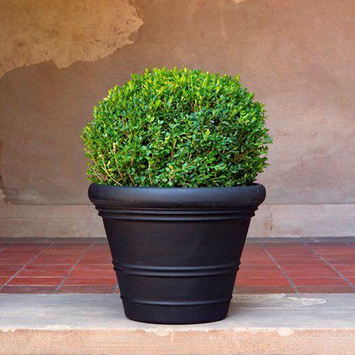 Veradek Riviera Outdoor Planter From Hayneedle Com Outdoor