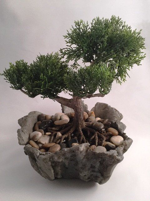 Superb Realistic Artificial Bonsai Plant In A Hand Carved Driftwood Textured  Concrete Bowl. Dimensions Of Planter