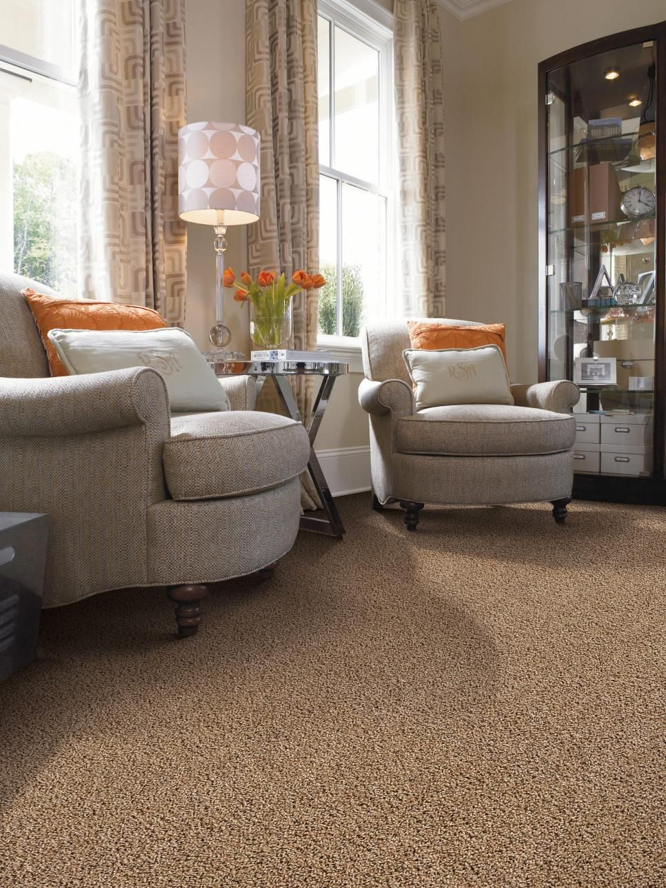 Carpet Floors Brown Carpet Living Room Living Room Carpet