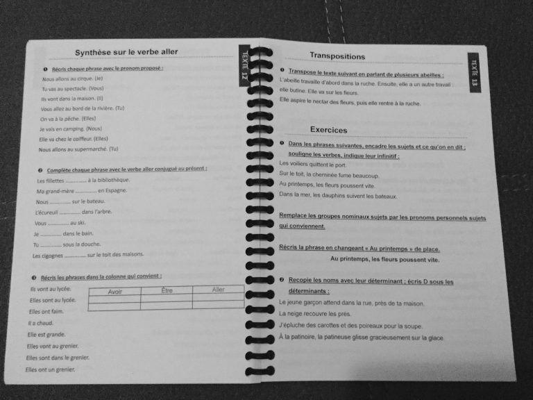 Faire De La Grammaire Au Ce1 Ce2 Picot 2016 Caracolus Ce1 Ce2 Ce2 Ce1