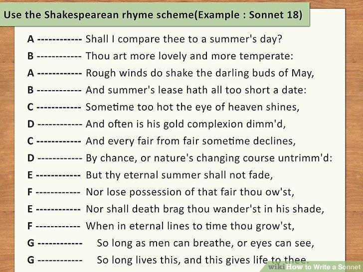 How to write an essay on shakespeare